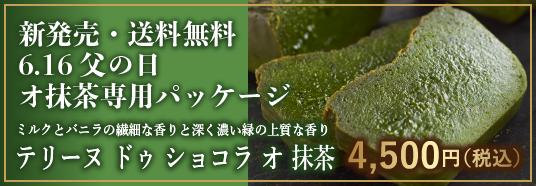新登場 テリーヌ ドゥ ショコラ オ 抹茶